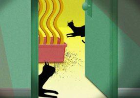 Как вывести запах кошачьей мочи с ковра в домашних условиях