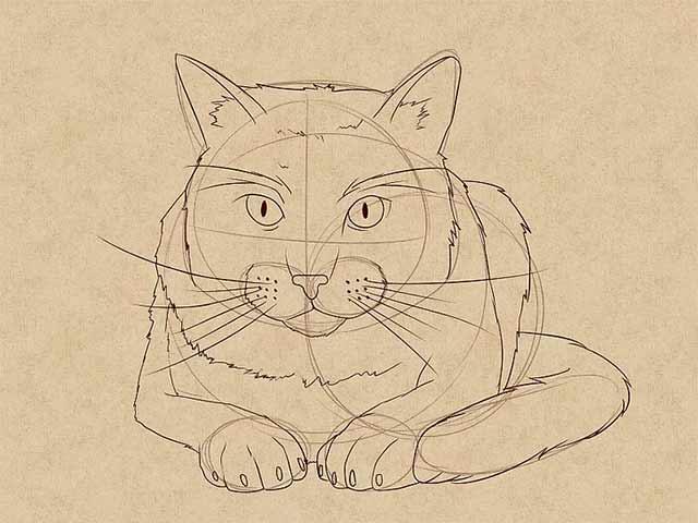 Чтобы дорисовать остальной мех и очертания кошки, также воспользуйтесь техникой штрихования.