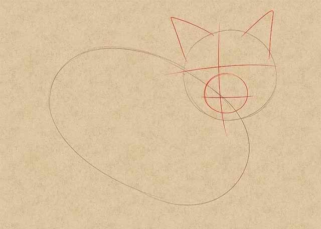 Как нарисовать лежачую кошку - Нарисуйте вспомогательные линии для мордочки кошки.