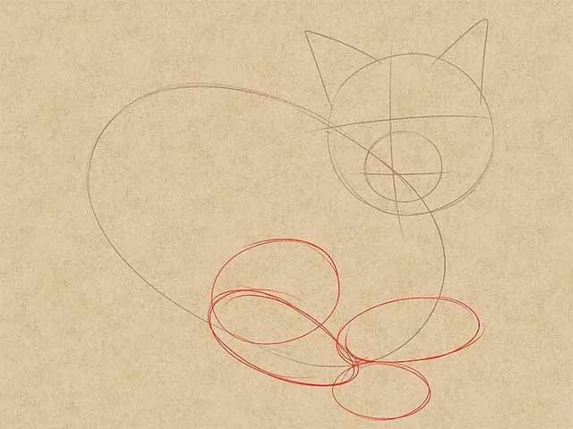 Как нарисовать лежачую кошку - Используя круги и овалы наметьте области для бедер, ног и лап.