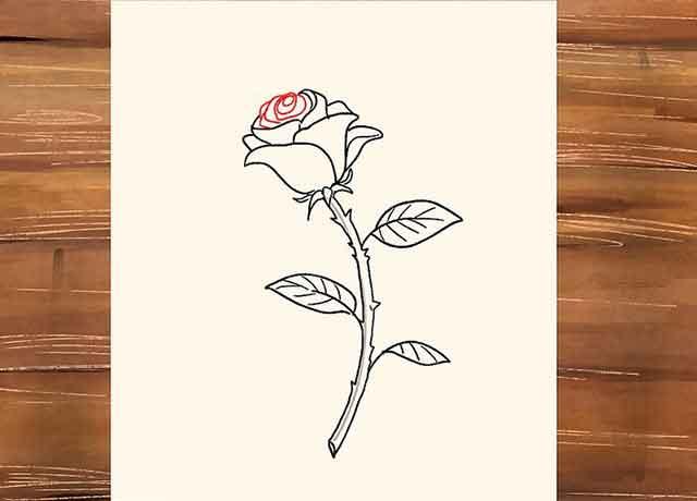 Как нарисовать розу со стеблем - Нарисуйте сердцевину розы.