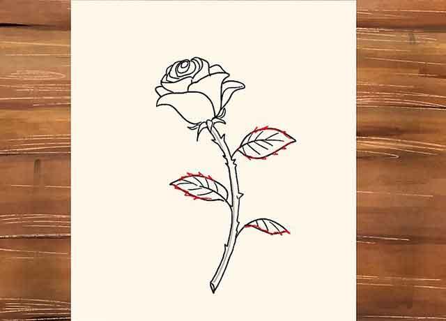 Как нарисовать розу со стеблем - Детализируйте листья нарисовав на них острые края.