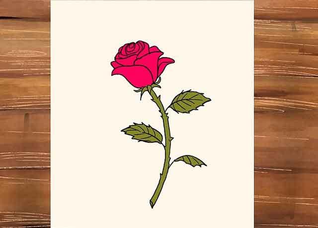Как нарисовать розу со стеблем - Сотрите все ненужные вспомогательный линии эскиза, а потом раскрасьте розу и листья.