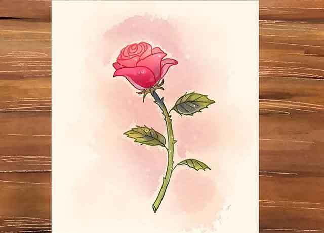 Как нарисовать розу со стеблем - Используйте оттенки на фоне и тени, чтобы украсить наш рисунок розы.