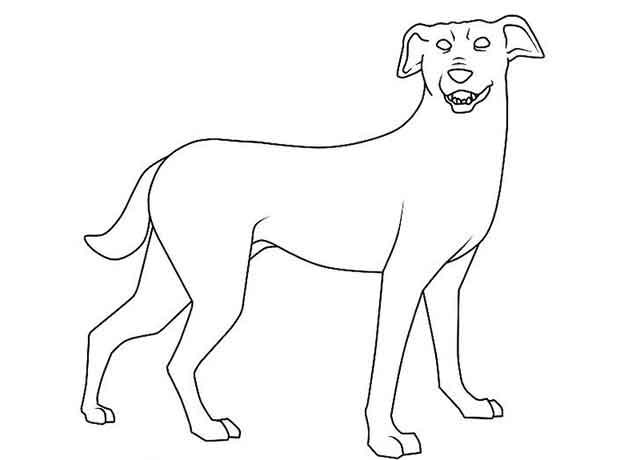 Как нарисовать мультяшную взрослую собаку - сотрите все вспомогательные линии и фигуры.