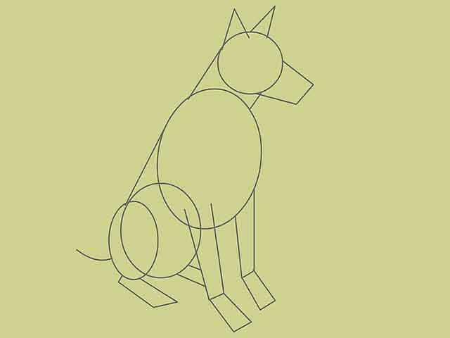 Как нарисовать собаку - Нарисуйте изогнутую линию направленную к верху