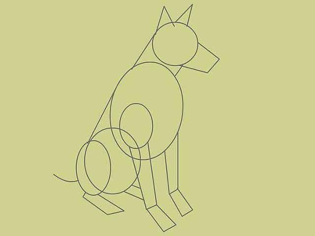 Как нарисовать собаку - Добавьте небольшой овал в верхней части передней лапы.