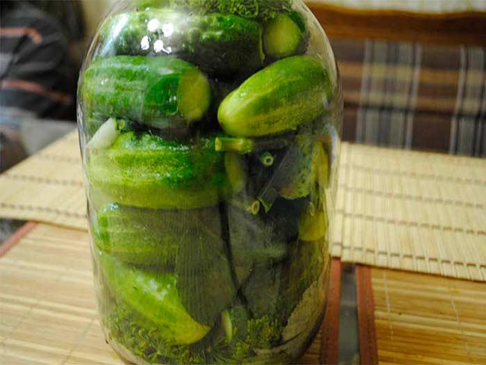 Сверху малосольных огурцов обязательно положить оставшиеся горошины перца и зелень