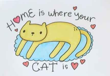 Дом там, где твой кот