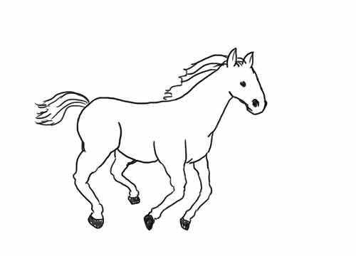 Как нарисовать лошадь начинающему карандашом 10