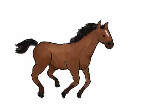 Как нарисовать лошадь начинающему карандашом 11
