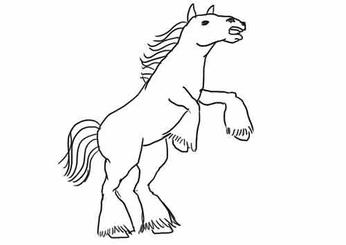 Как нарисовать коня карандашом начинающему 11