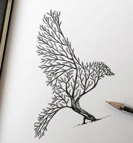 Срисовка Елочная птица