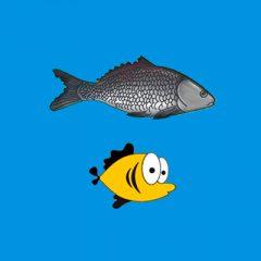 Как легко нарисовать рыбку