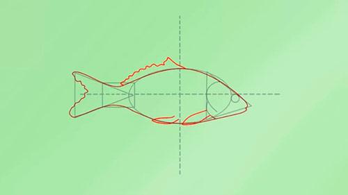 Как легко нарисовать реалистичную рыбку - Шаг 4