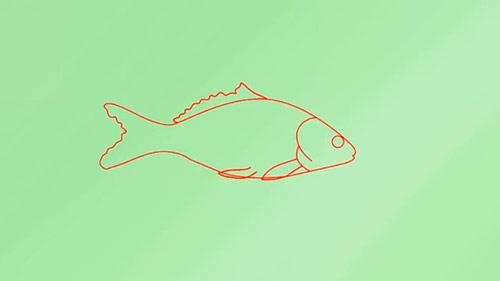 Как легко нарисовать реалистичную рыбку - Шаг 5