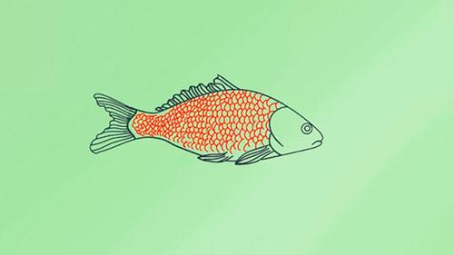 Как легко нарисовать реалистичную рыбку - Шаг 8