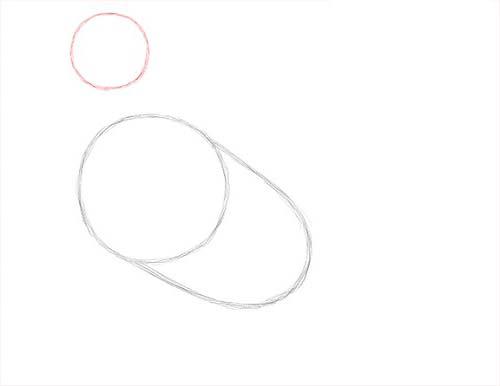 Как нарисовать голубя легко и просто - Шаг 3
