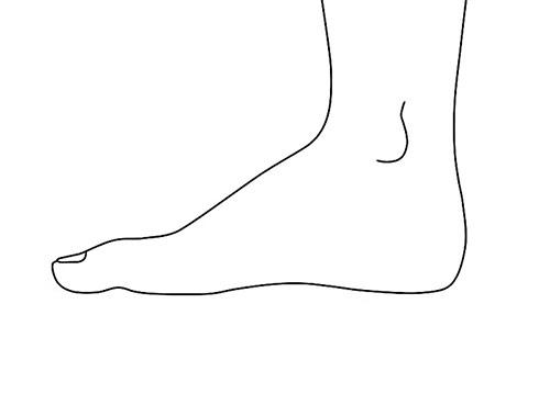 Рисуем ступню - вид сбоку - Шаг 5