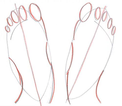 Рисуем две ступни - вид сверху - Шаг 5