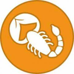 Скорпион - с кем лучше всего совместим