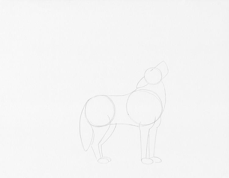 Шаг 3: Нарисуйте ноги волка