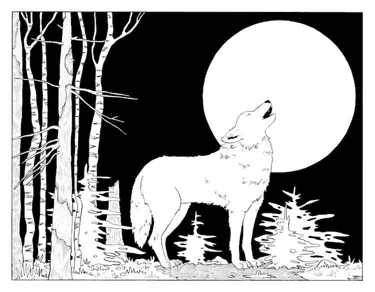 Шаг 7: Раскрасьте рисунок с волком