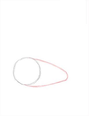 Как нарисовать лебедя карандашом - Шаг 2