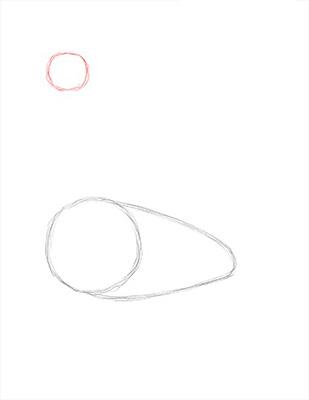 Как нарисовать лебедя карандашом - Шаг 3