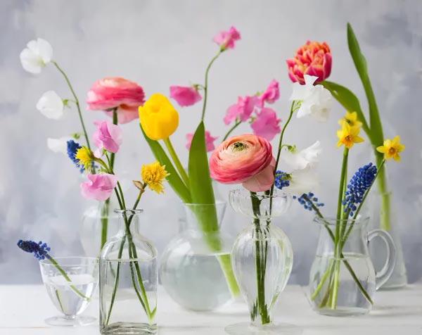 Держатели для цветов