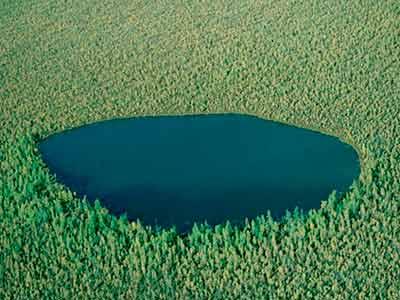 Лесное озеро - расположено где-то в Тюменской области