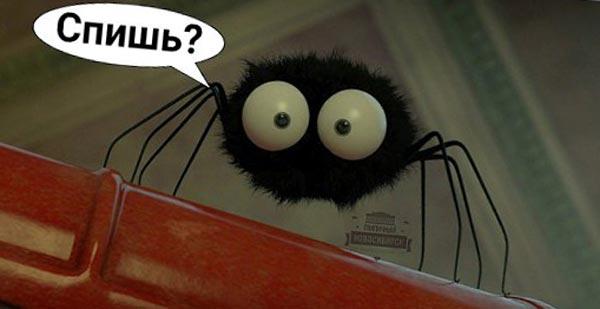 Ты проглатываешь восемь пауков в год, пока спишь.