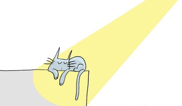 Проводи время, греясь на солнышке