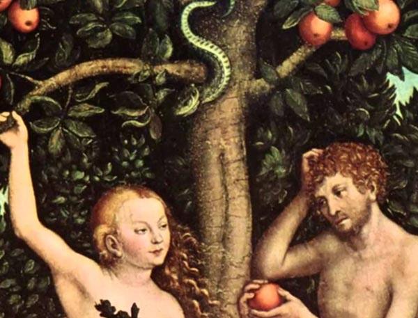 Запретным плодом в истории Адама и Евы является яблоко.