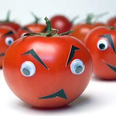 Чем вредны помидоры для организма?