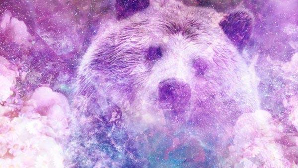 Скрытый смысл ваших сновидений о медведях