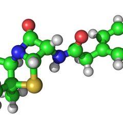 Не хватает белка в организме, что делать?