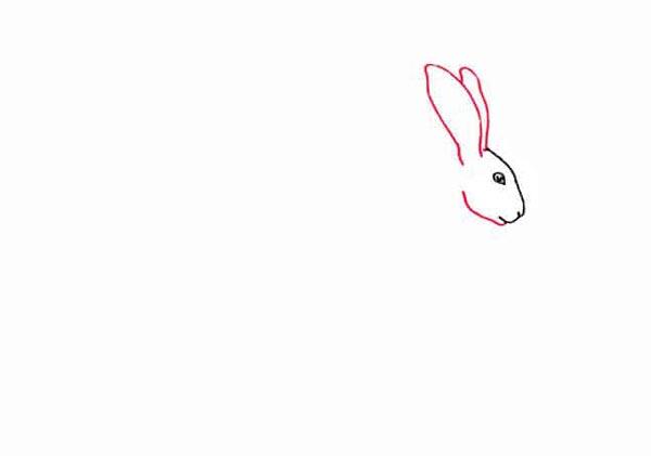 Разноцветный заяц шаг 2