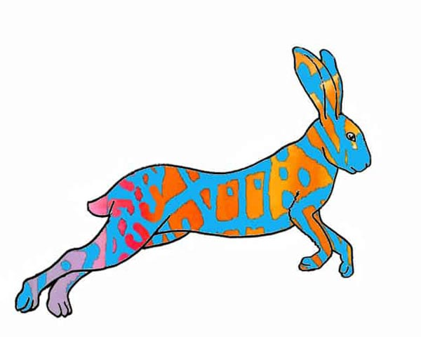 Разноцветный заяц