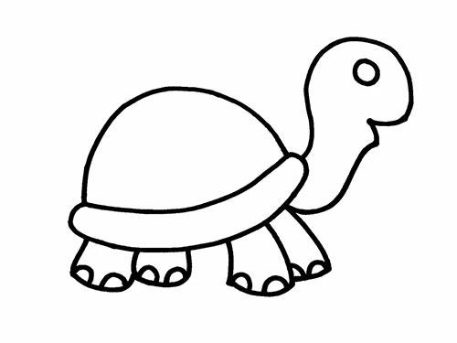 Как нарисовать черепаху для детей - Шаг 10