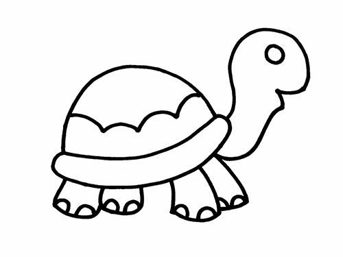 Как нарисовать черепаху для детей - Шаг 11
