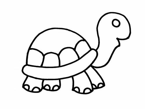Как нарисовать черепаху для детей - Шаг 12