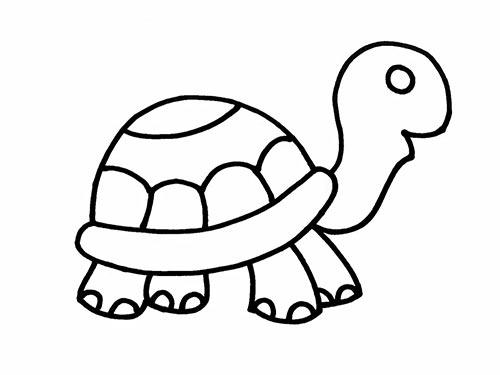 Как нарисовать черепаху для детей - Шаг 13