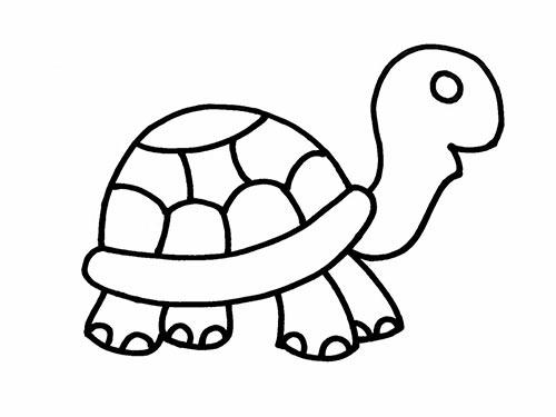 Как нарисовать черепаху для детей - Шаг 14
