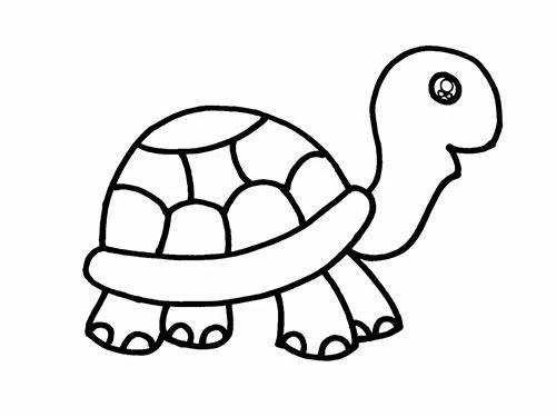 Как нарисовать черепаху для детей - Шаг 15