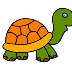 Как нарисовать черепаху легко карандашом поэтапно для детей