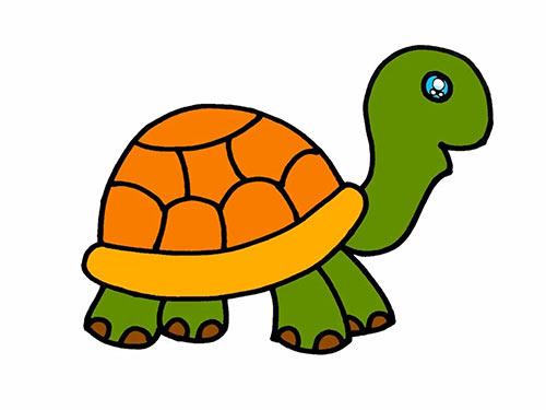 Как нарисовать черепаху для детей - Шаг 16