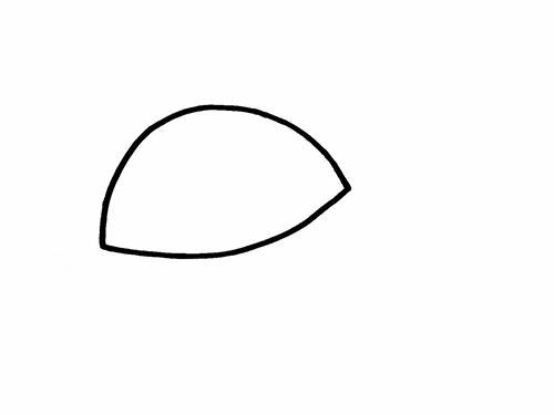 Как нарисовать черепаху для детей - Шаг 2
