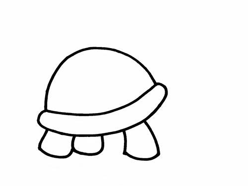 Как нарисовать черепаху для детей - Шаг 6