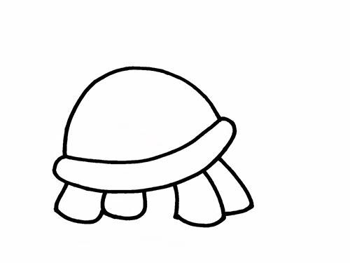 Как нарисовать черепаху для детей - Шаг 7